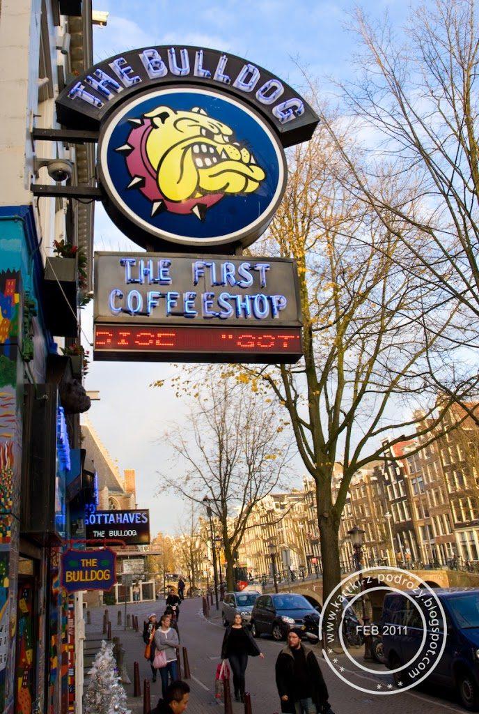 Pierwszy Coffee Shop w Amsterdamie.