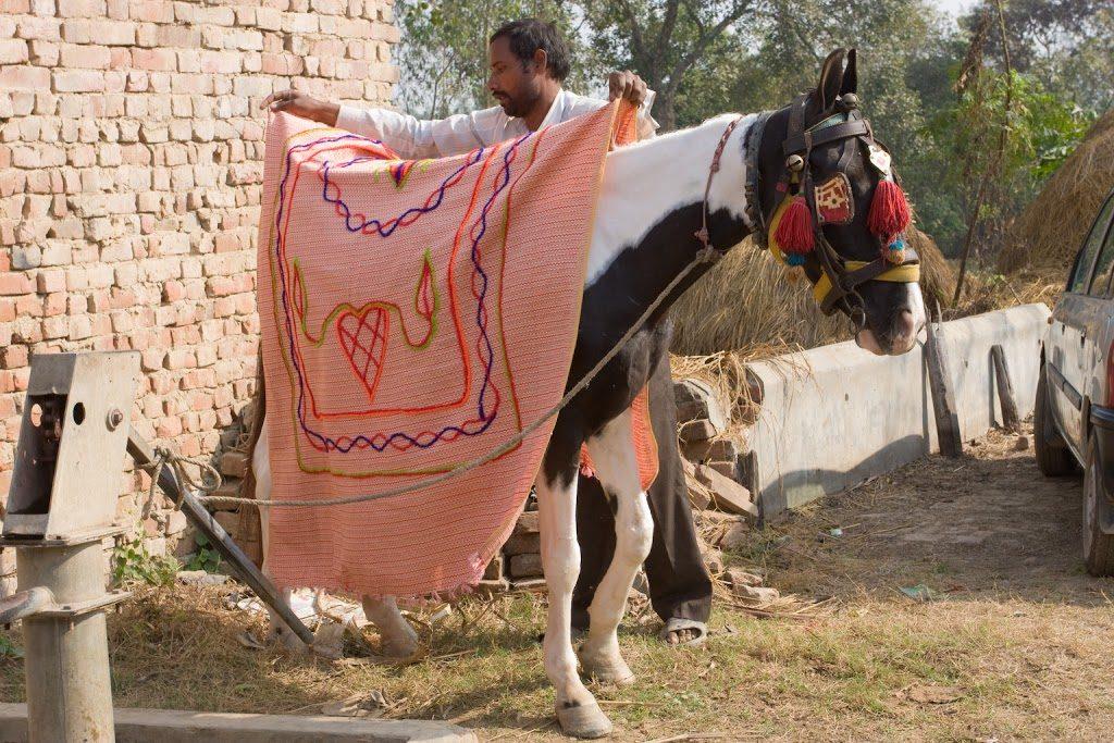 Ostatnie przygotowania konia dla pana młodego.