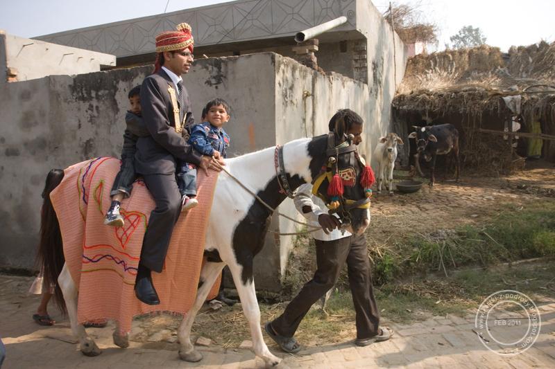 Auta ślubne oznaczane są naklejkami z takim oto obrazkiem - młodzieniec w turbanie dosiadający konia.