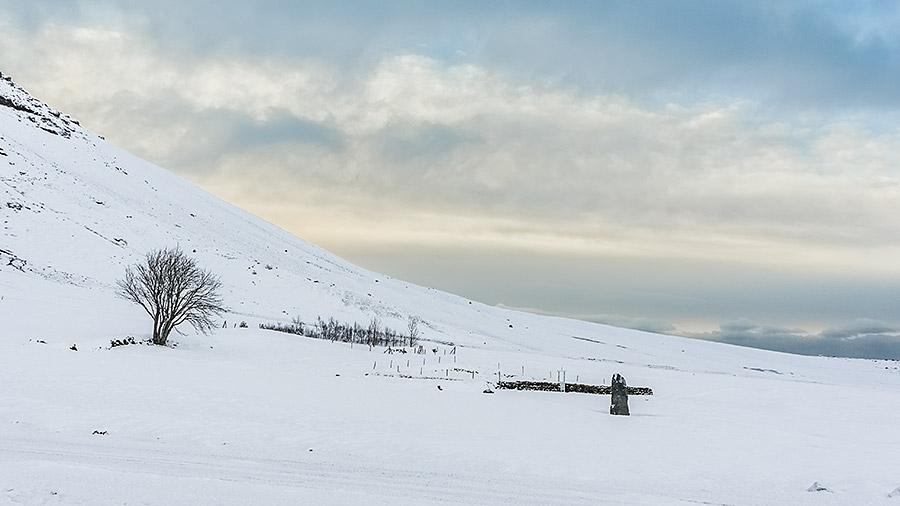 Po opuszczonym gospodarstwie w Sandfell pozostało tylko samotne drzewo i mały cmentarz.