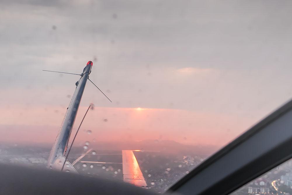 Z-zazdrosci-ptakom-jest-samolot-08