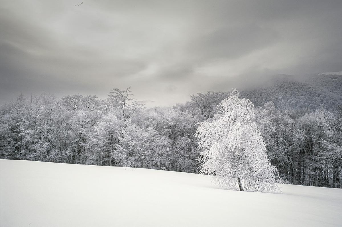 Bieszczady w zimie widziane analogowym okiem
