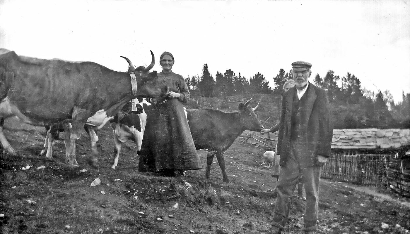 Brunost-Ser-Norwegia-Kartka-z-podrozy-(3)