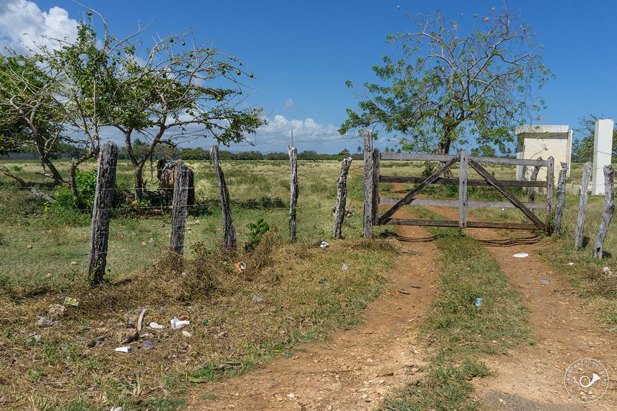 Kartka-z-Podrozy-Dominikana-005