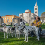 Zadar od podwórka – podglądając (nie)zwykłą codzienność