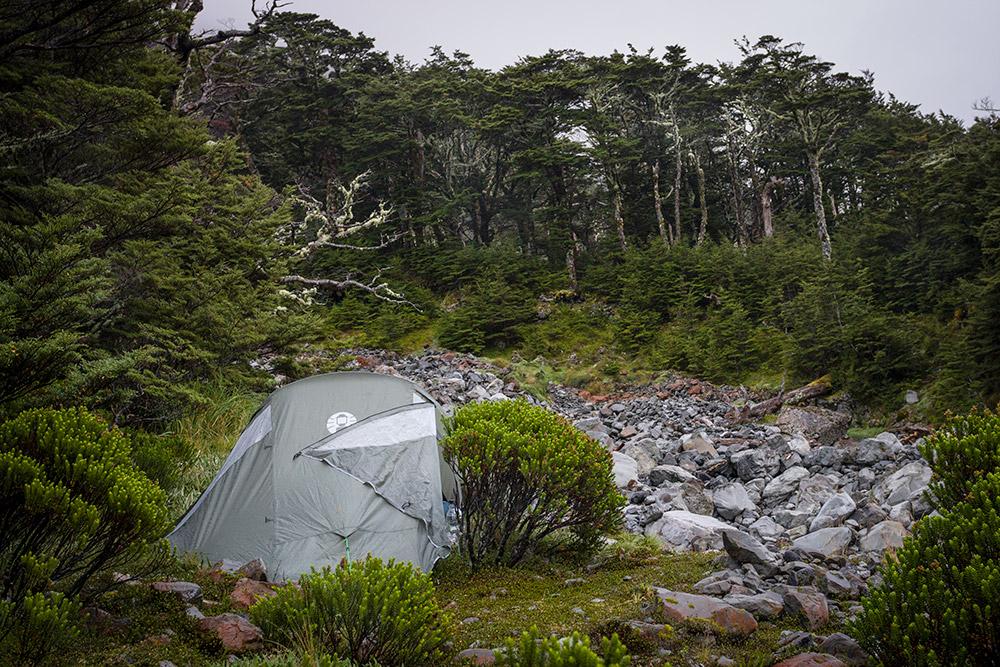 Brak miejsca na biwak w Crow Valley w niczym nas nie zniechęcił. Rozstawiamy namiot na małej kępce trawy porośniętej dookoła bujnym i soczyście zielonym mchem.